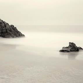Black and white rocks by John Souza - Landscapes Beaches ( water, sand, wave, sea, ocean, pwcbwlandscapes, beach, rocks )