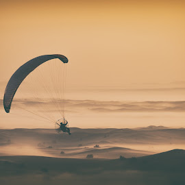 Paramotors Passion by Michael Schäfer - Sports & Fitness Other Sports ( emirates, sand, desert, romantic, hotairballoon, balloon, airsport, skydive, flying, dubai, uae, sunrise, parachute,  )