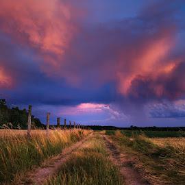 20170705-DSC_1071 by Zsolt Zsigmond - Landscapes Prairies, Meadows & Fields ( non-urban scene, grass, scenics, agriculture, sunlight, landscape, dusk, sun, farm, field, sky, nature, cloud - sky, blue, sunset, outdoors, sunrise - dawn, meadow, summer, rural scene, everypixel )
