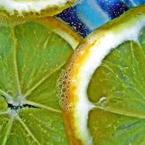 lemon by Vesna S. Disić - Food & Drink Fruits & Vegetables ( two, fruit, sliced, yellow, lemon )
