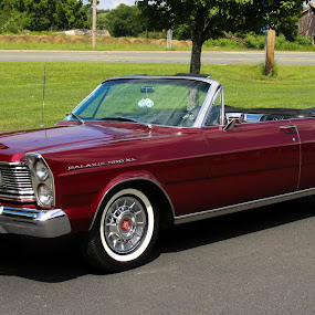 1965 Galaxie  by Linda Antenucci - Transportation Automobiles (  )