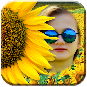 Sunflower Photo Frames