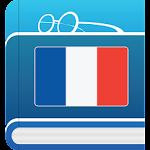 Dictionnaire français Icon