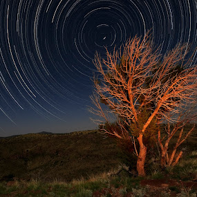 Dreamscape by Jim O'Neill - Landscapes Starscapes ( light painting, star trails, landscape, night sky, starscape )