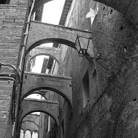 Arches, Siena, Italy by Jo Brockberg - Buildings & Architecture Architectural Detail ( pigeons, old, italian, black and white, windows, architecture, city, lantern, italia, details, arches, buildings, architectural, perspective, bricks, stones, italy, repetition )