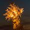 6879 jpg Firework July-15-6879.jpg
