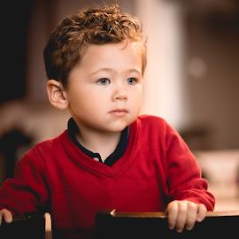 Curls by Mike DeMicco - Babies & Children Child Portraits ( red, blue, handsom, curls, boy, portrait, eyes )