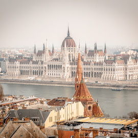 Budapest Parliament Building by . Reedd2 - Buildings & Architecture Public & Historical ( parliament, hungary, hungarian parliament building, budapest, calvinist church, river danube,  )