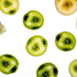 Leek by Alina Dinu - Food & Drink Fruits & Vegetables ( leek, backlight, fresh, food, green, white, healthy, ingredient, circle, vegetable, closeup )