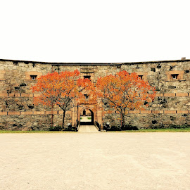 by Bente Agerup - Buildings & Architecture Public & Historical ( oscarsborg castle, autumn, trees, historic, military )