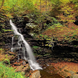 Ricketts Glen State Park by Tony Bendele - Landscapes Travel ( waterfalls, outdoors, waterfall )