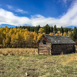 Old Homestead by Chad Roberts - Buildings & Architecture Public & Historical ( cabin, mountain, autumn, fall, historical, valley, homestead )