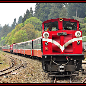Alishan (Taiwan) by Vinay Tyagi - Transportation Trains