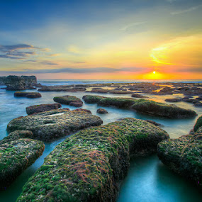 Sunset in Bali by Edwin Kosasih - Landscapes Sunsets & Sunrises ( peaceful, green, sunset, peace, beach, mengening )