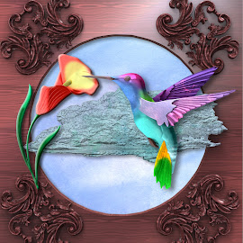 Flower and Hummingbird by Charlie Alolkoy - Illustration Flowers & Nature ( bird, sky, wood, hummingbird, cloud, flower )