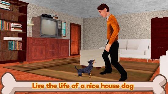 Chihuahua Dog Simulator Free Online Games Play