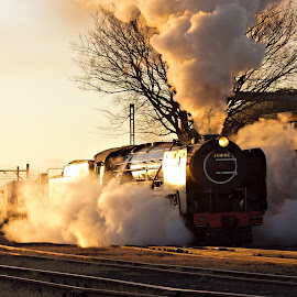 Reefsteamers sunrise by Tony Wilson - Transportation Trains ( germiston, johannesburg, steam train, south africa, train, reefsteamers )