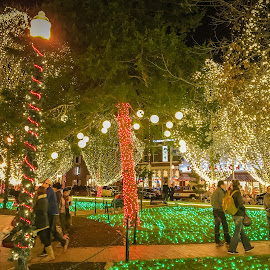 Only 134 Days by Jennifer  Loper  - Public Holidays Christmas ( sidewalk, poles, grass, town square, arkansas, christmas, trees, people, lights )