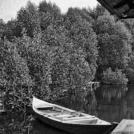 Mangrove Ride BW by Z. Y. Sjahrial - Instagram & Mobile iPhone