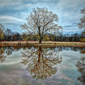 Spring Reflection by Bruce Martin - Landscapes Prairies, Meadows & Fields ( pwcreflectons )