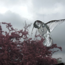 Glass Hummingbird and the neighbors Crabapple Tree by Linda McCormick - Artistic Objects Glass ( glass hummingbird, tree, glass, artistic object, crabapple,  )
