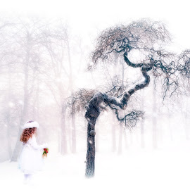 the gift by Kathleen Devai - Illustration Sci Fi & Fantasy ( girl, winter, tree, ice, snow )