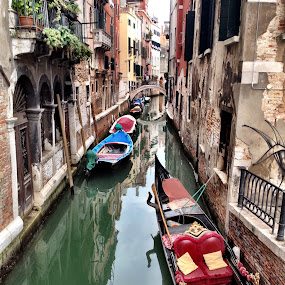 Venice Canal by Donna Silva - City,  Street & Park  Historic Districts