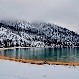West Shore by Brian Blood - Landscapes Beaches ( shore, tahoe, lake, sand harbor, west,  )
