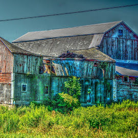 Old Barn by Ruth Diamond - Buildings & Architecture Decaying & Abandoned
