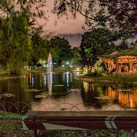 Dream Garden by Andrius La Rotta Esquivel - City,  Street & Park  City Parks ( amazing, city life, city, botanical garden, city park, photographer, garden, photography, colombia, night photography )