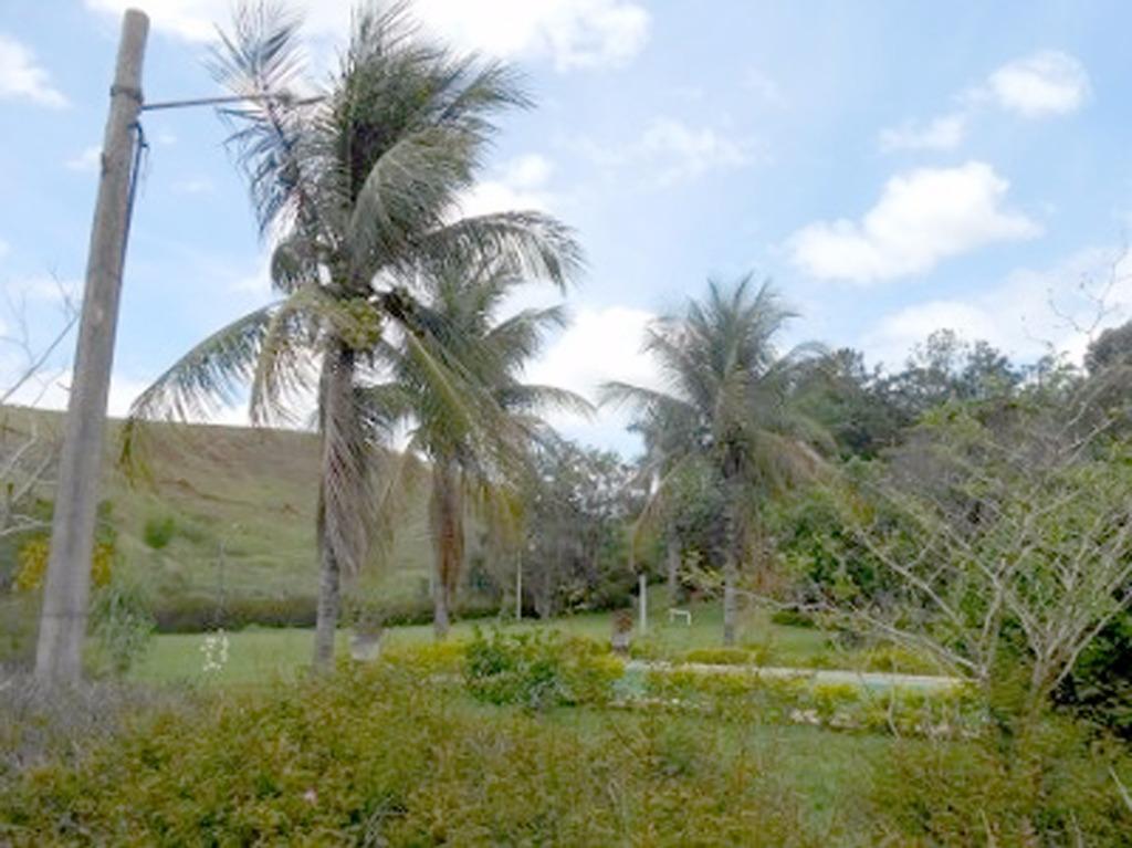 Fazenda / Sítio à venda em Paraíba do Sul, Grama