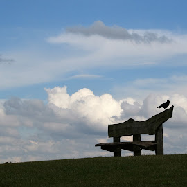 seat in  the sky by Sue Rickhuss - Landscapes Cloud Formations