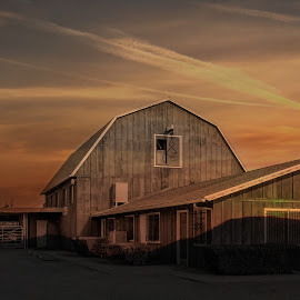 at the barn by Apollo Reyes - Buildings & Architecture Other Exteriors ( ranch, barnyard, barn, sunset, dusk )