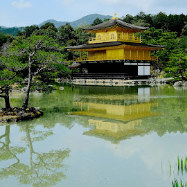 the Golden Pavillon by Fred Goldstein - Buildings & Architecture Places of Worship ( landmark, pavillon, reflection, japan, kyoto )
