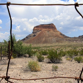 Wanting Freedom by Amanda Crippes - Landscapes Deserts ( fence, desert, mesa, rust, abandoned )