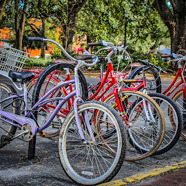 by Ron Meyers - Transportation Bicycles
