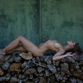 nude on wood by Reto Heiz - Nudes & Boudoir Artistic Nude ( nude, wood, color, outdoor, nudeart, green door )