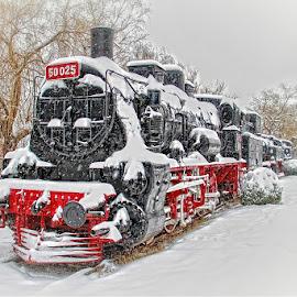 Winter by Dumitru Doru - Transportation Trains ( old, winter, vintage, railroad, snow, train, transportation )