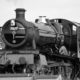 Lydham Manor 7827 Steam Engine Monochrome by Bryan Wenham-Baker - Transportation Trains ( steam engine, monochrome, goodrington, lydham manor 7827, engine, railroad, steam train, devon, england, south sands, railway, steam railway, train, torbay, mono, lydham manor, steam, 7827 )
