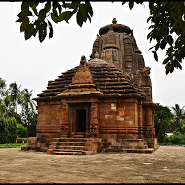 Rajarani Temple by Prasanta Das - Buildings & Architecture Places of Worship ( temple, red stone, odia style, classic )