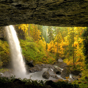 Behind North Falls by Gordon Banks - Landscapes Forests ( oregon, fall colors, silver falls state park, waterfall, cave )