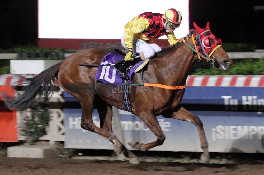 La Camilita (Seeking The Dia) conquista Handicap (1000m-Arena-HCH). - Staff ElTurf.com