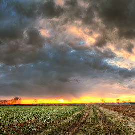 Hungarian skies CVIII. by Zsolt Zsigmond - Landscapes Prairies, Meadows & Fields ( clouds, sky, sunset, road, landscape, panorama )