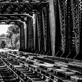 Train Bridge by Charles Shope - Buildings & Architecture Bridges & Suspended Structures ( natural light, black and white, outdoor, train, tracks, bridge, steel, bridges,  )