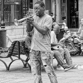 Come Blow Your Horn by Gary Ambessi - People Musicians & Entertainers