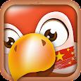Learn Mandarin Chinese Phrases/Chinese Translator