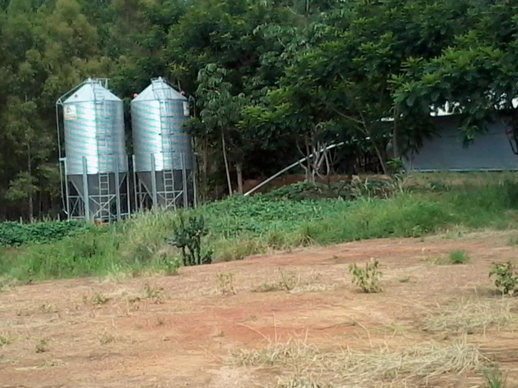 Fazenda com 4 dormitórios à venda, 2450000 m² por R$ 12.000.000,00 - Zona Rural - Uberaba/MG