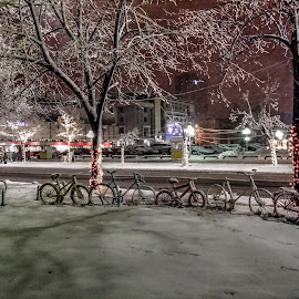 by Biljana Nikolic - City,  Street & Park  Street Scenes (  )