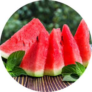 Download Health Benefits of Watermelon For PC Windows and Mac