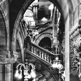 Capitol 323 by Kevin Lucas - Buildings & Architecture Other Interior ( opulence, limestone, carved, ornate, black and white, staircase, stone, architecture, new york, capitol )